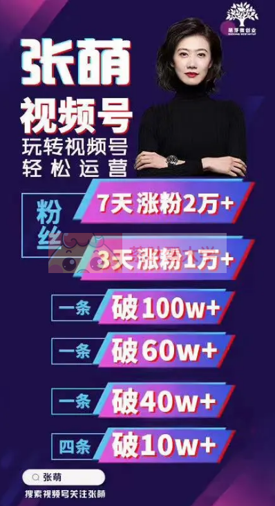 张萌萌姐视频号实战训练营 - 网盘分享 - 下载 职场提升 第1张